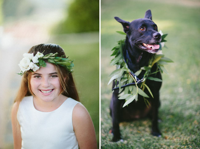 pup with garland
