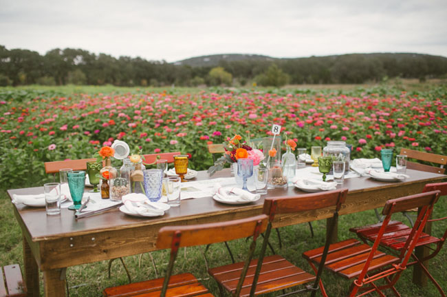 flower fields and tables