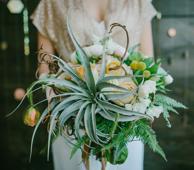 giant airplant bouquet