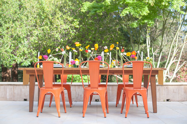 California poppy inspiration