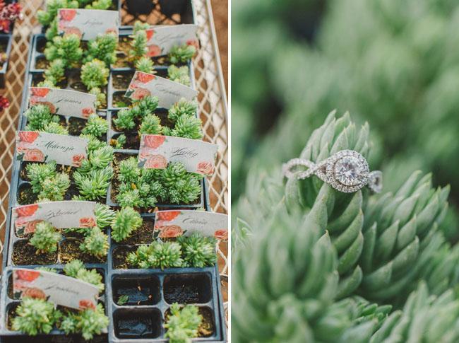 ring greenhouse
