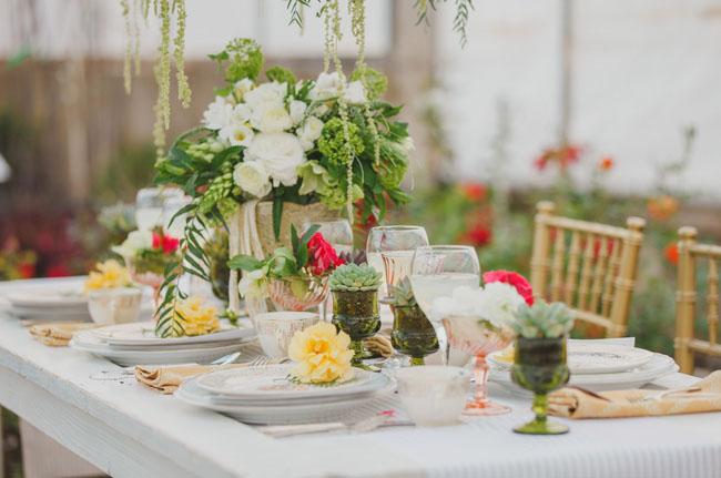 succulent goblets