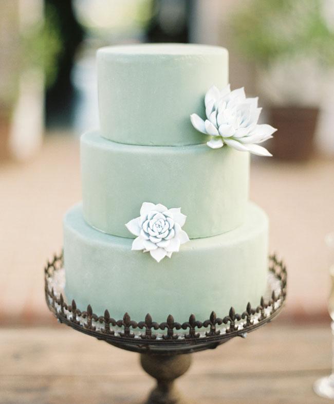 mint succulent cake
