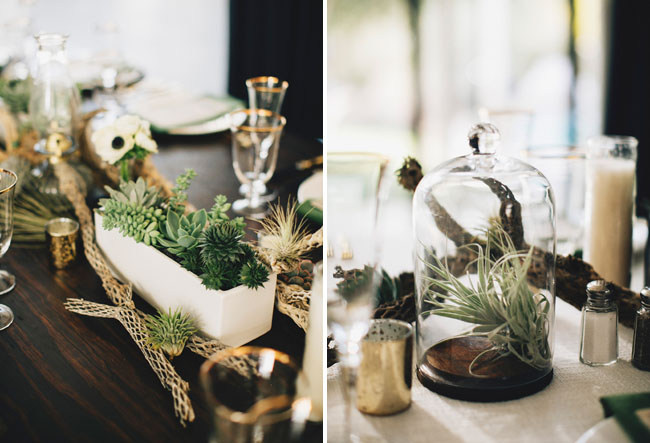 airplant centerpieces