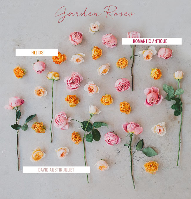 Garden Roses Are One Of Our Favorite Flowers Second Only To Peonies We D Say Early Summer Brides Might Luck Out Be Able Get Their Hands On The Last