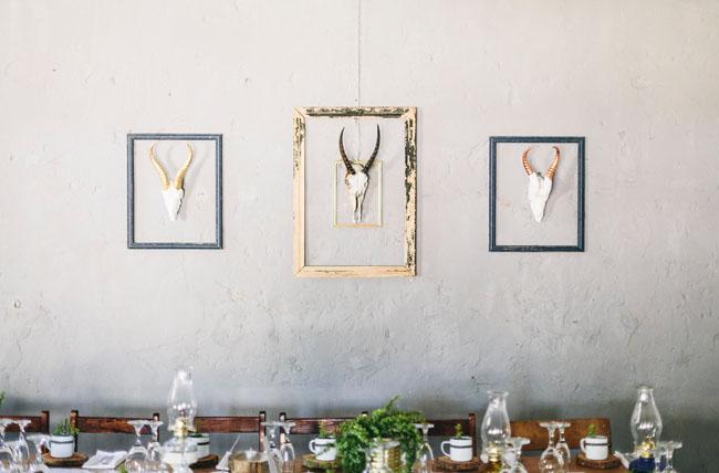 antlers in frames