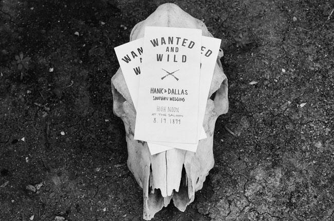 steer skull and invitations