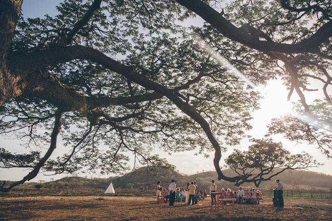 tree line ceremony