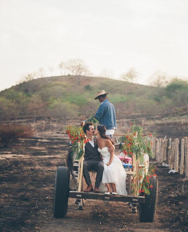cattle cart ride