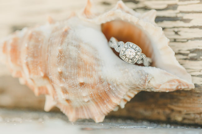 ring in a shell