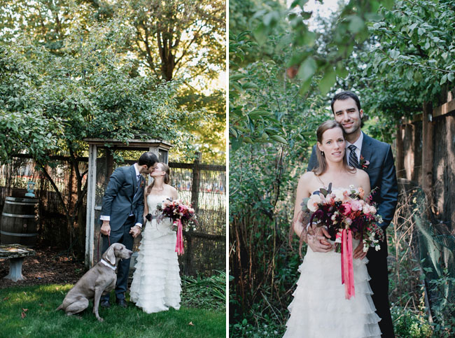 Seattle wedding with weimaraner
