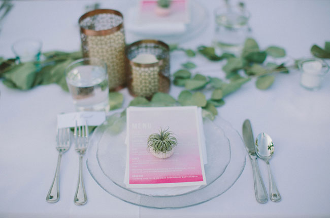 ombre menu with airplant