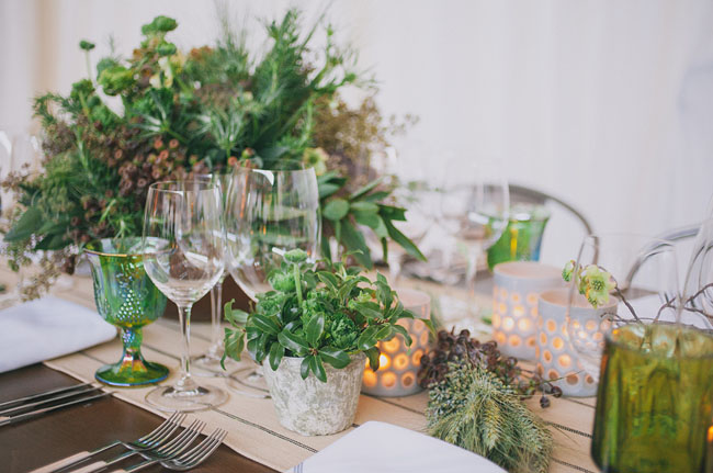 organic potted plant tablescape