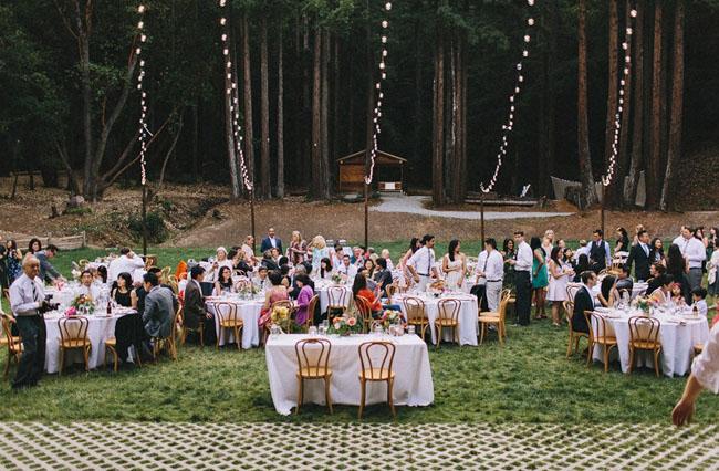 woodland reception