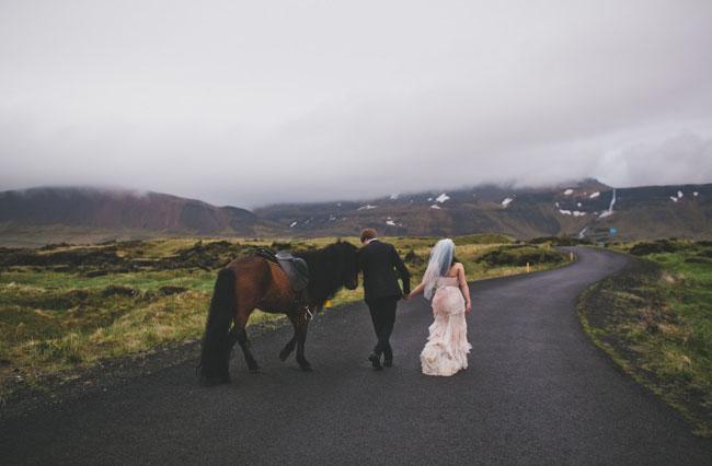 Iceland wedding with horse