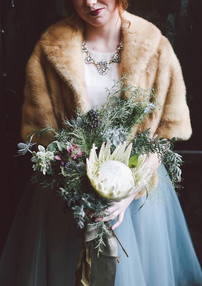 white king protea