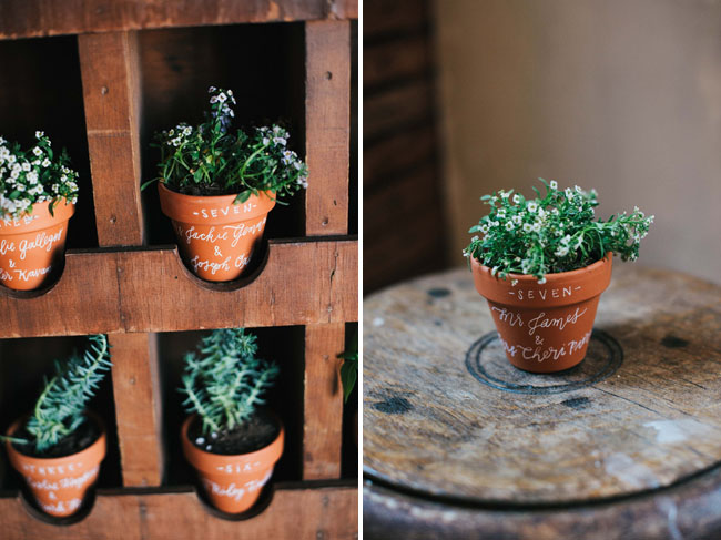 potted plant favors