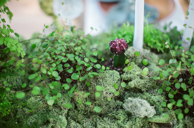 fern and moss tablescape