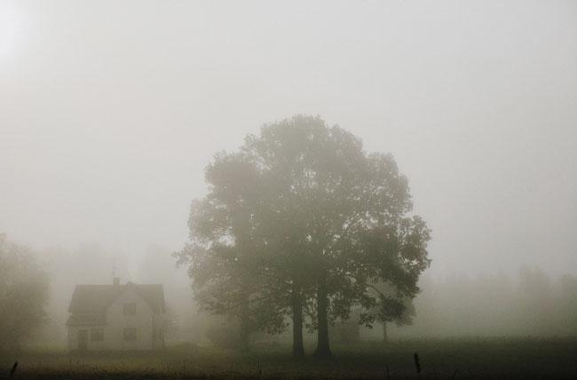 foggy Sweden wedding