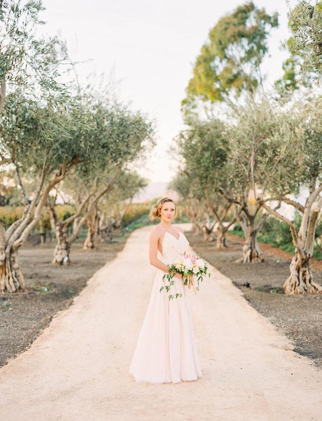 blush open back wedding dress