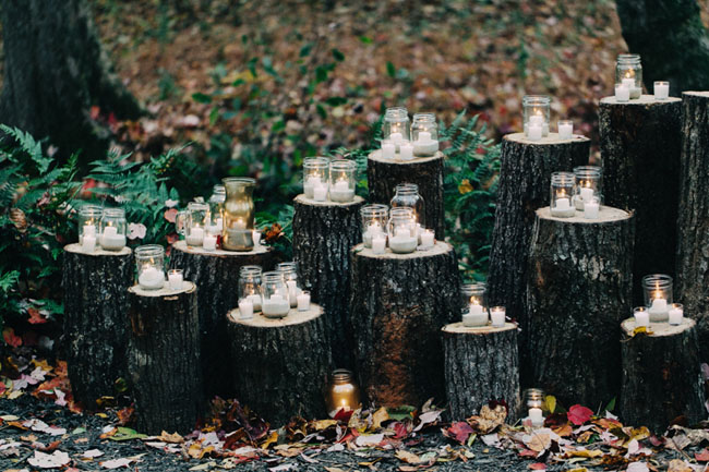 candles on wood trunks
