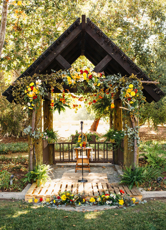 colorful forest arbor