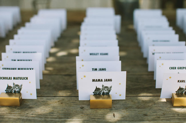 cat escort cards