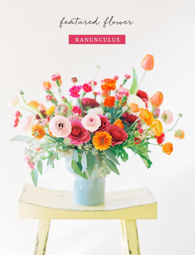 Ranunculus Flower Feature