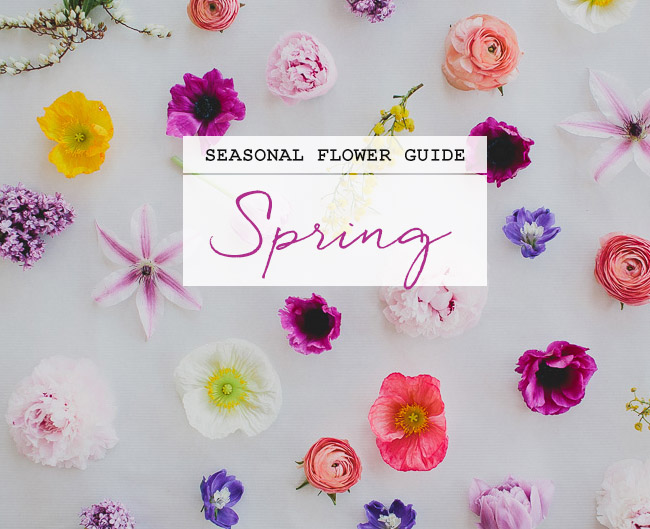 Seasonal Flower Guide: Spring