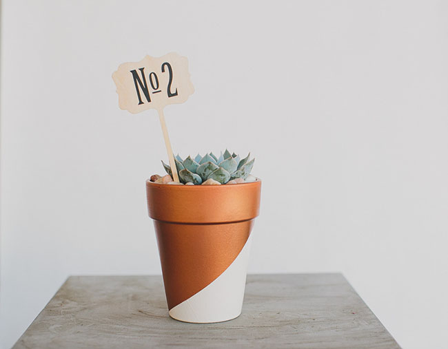 Succulent table number