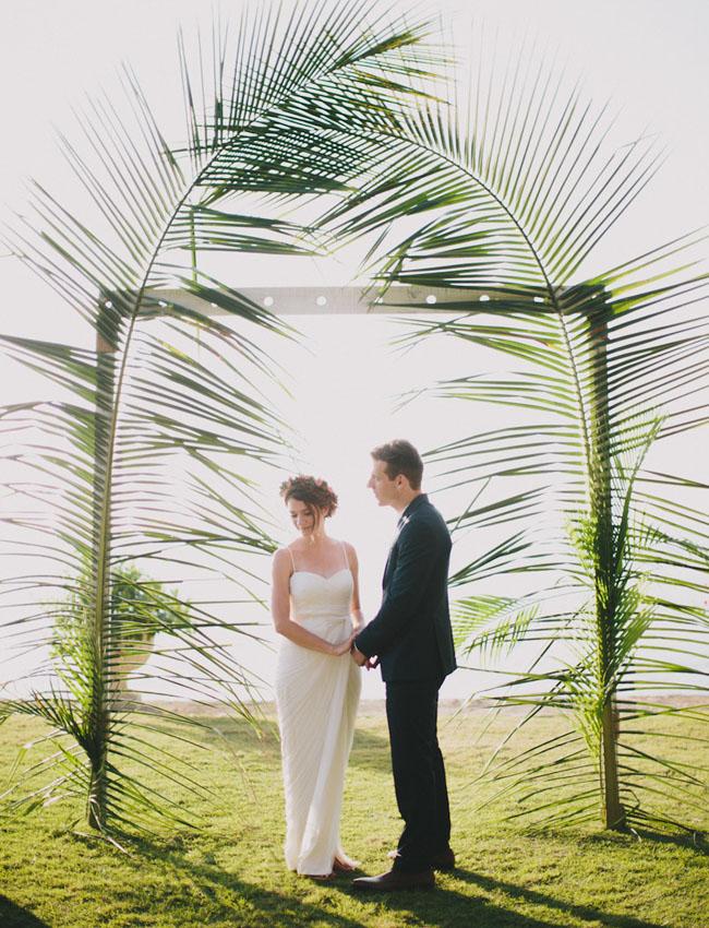 giant palm backdrop