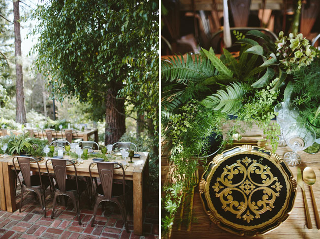 Vintage Woodland Party