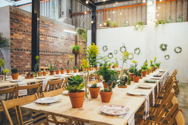 potted plant tablescape