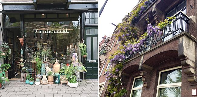 amsterdam shops