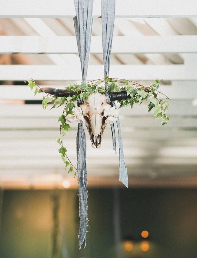 hanging steer skulls