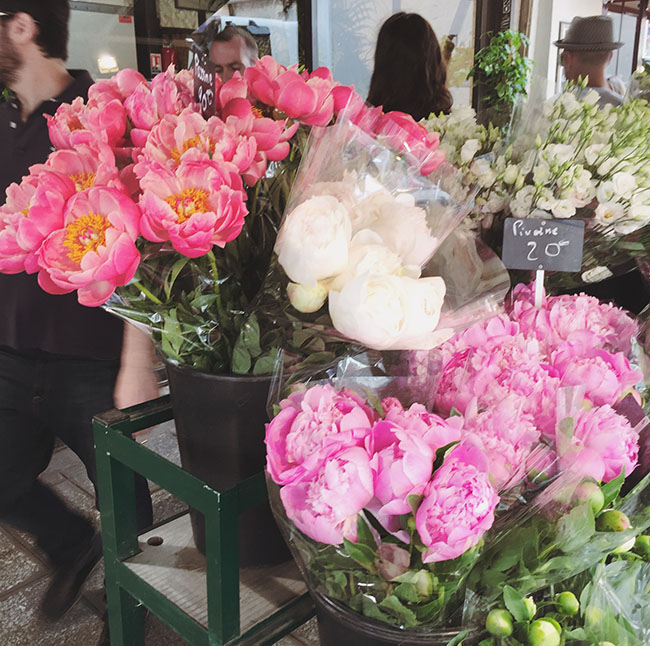 peonies from Paris