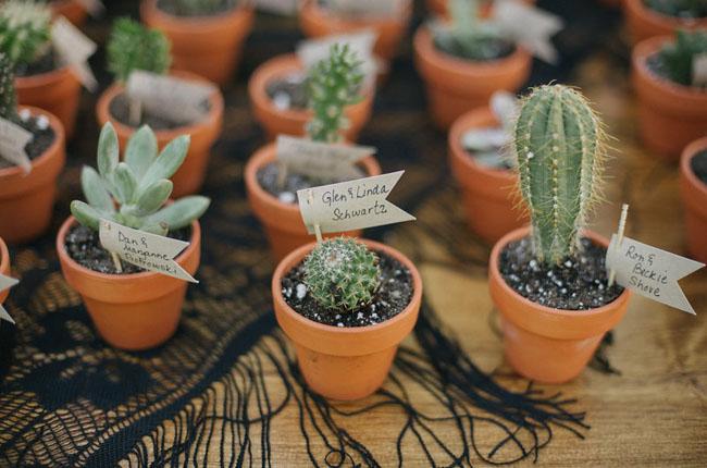 cactus favors