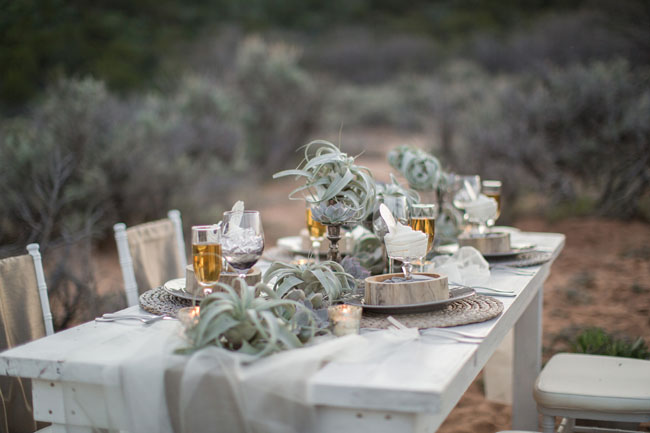 airplant tablescape decor