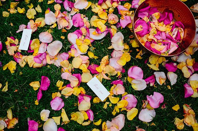 flower petal exit