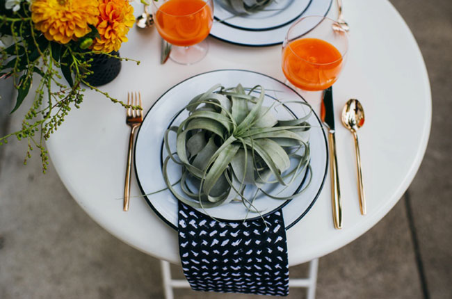 airplant plate setting