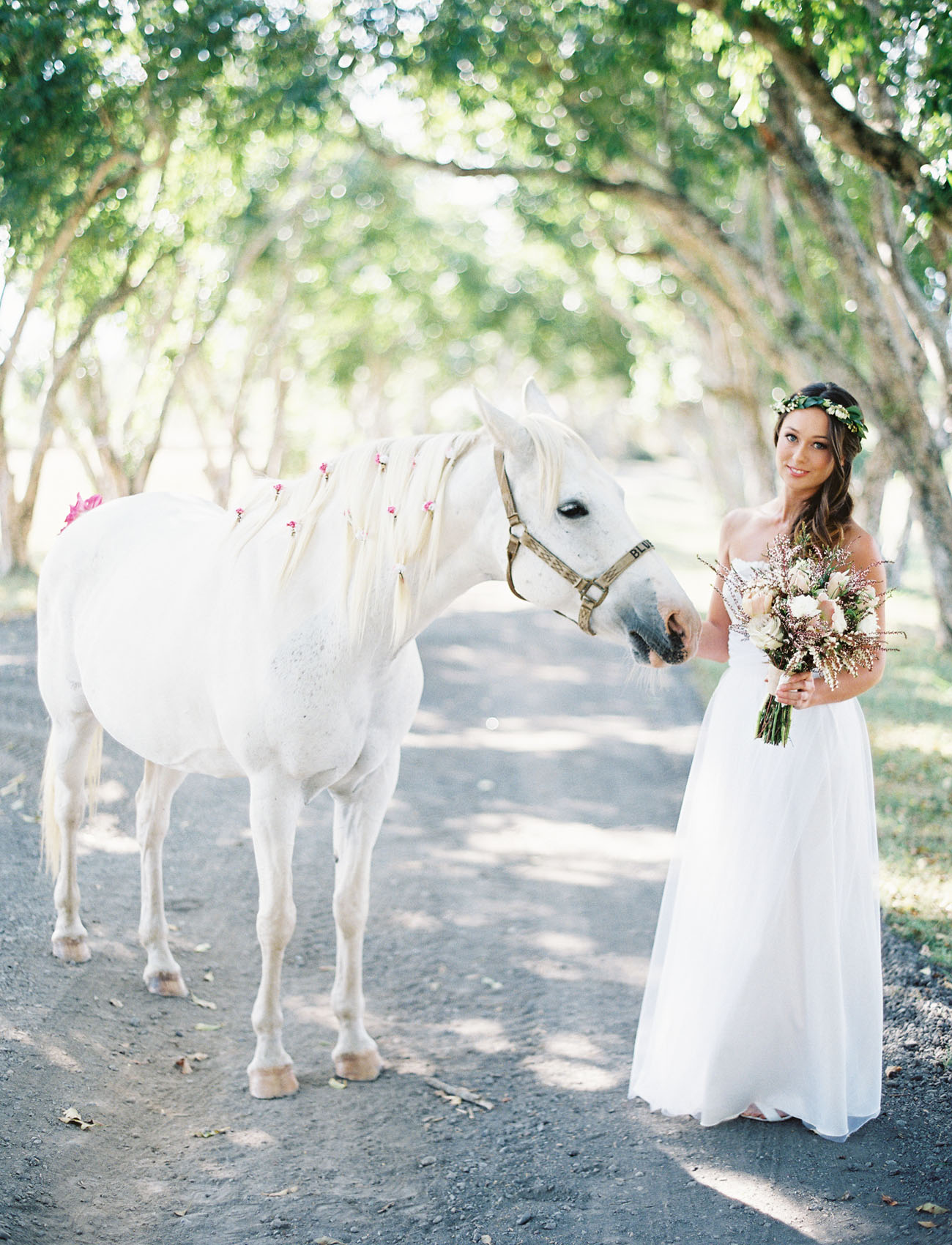 Wedding Dress Hawaii