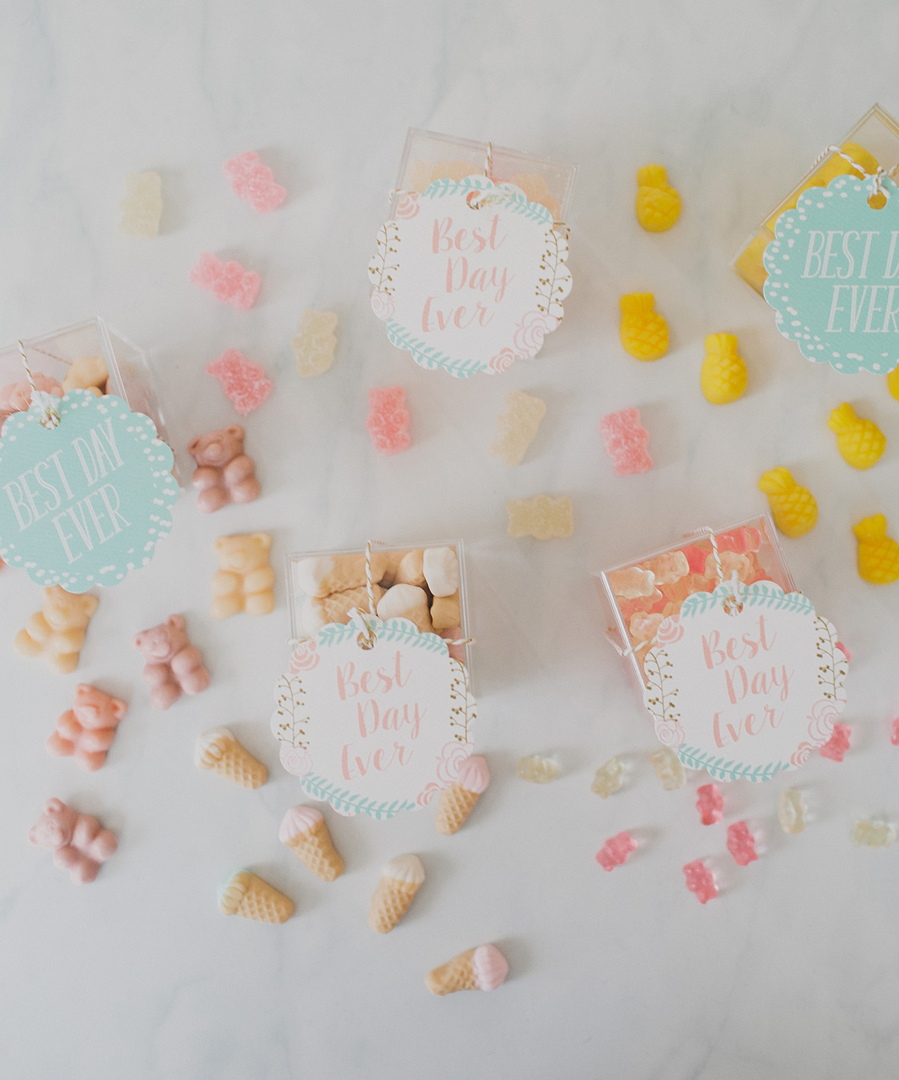 Candy Favors DIY Template