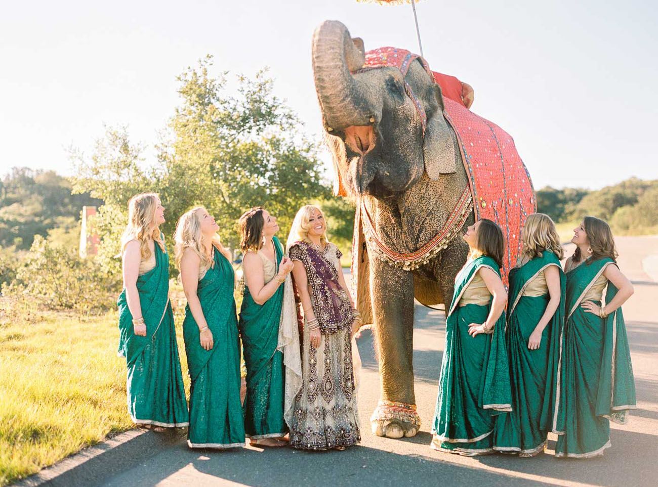 bridesmaids with elephant