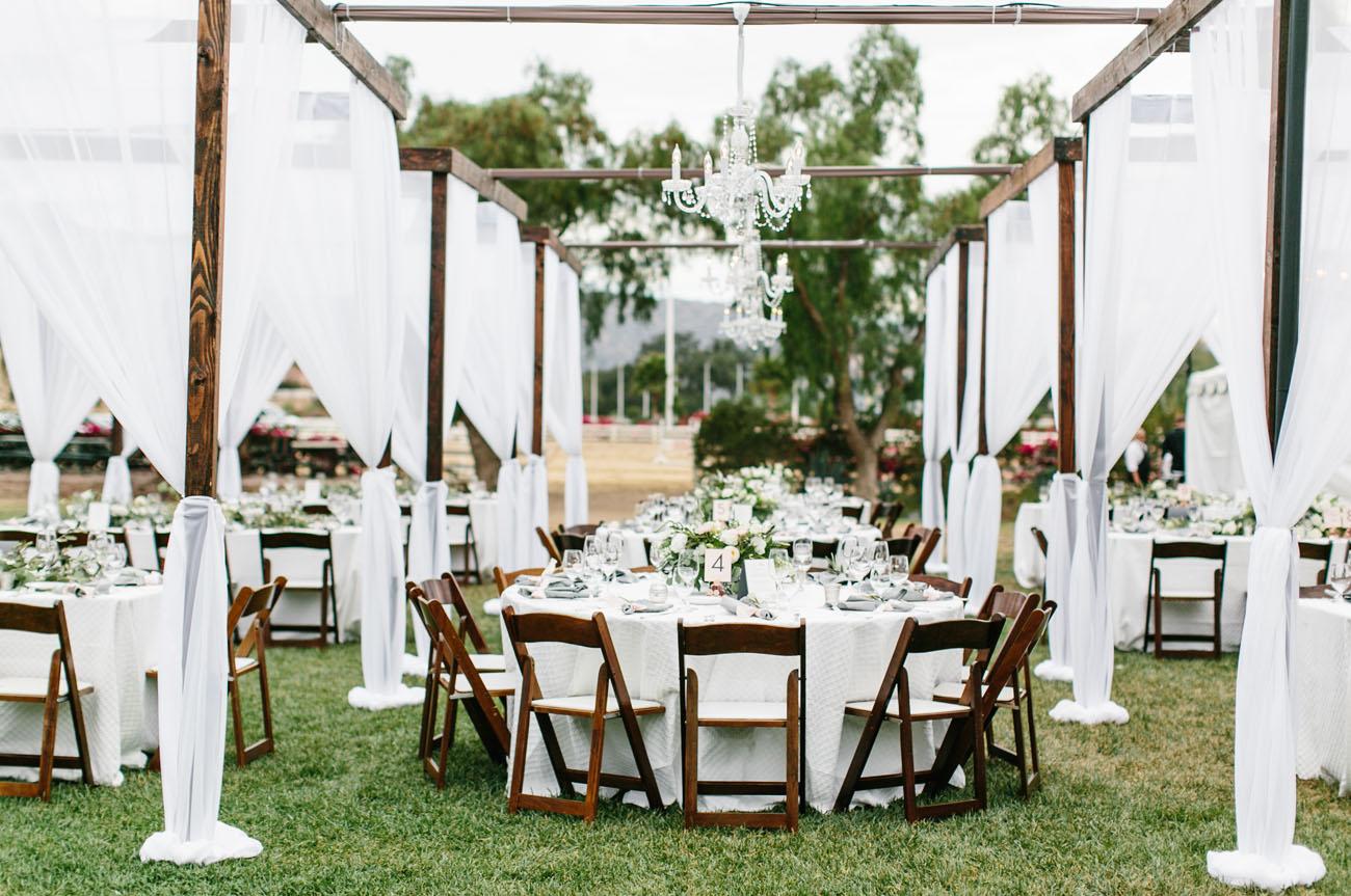 Wildy Modern Romance Wedding