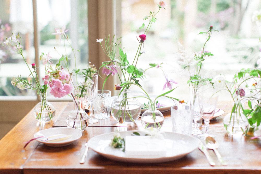 Herbarium Inspiration