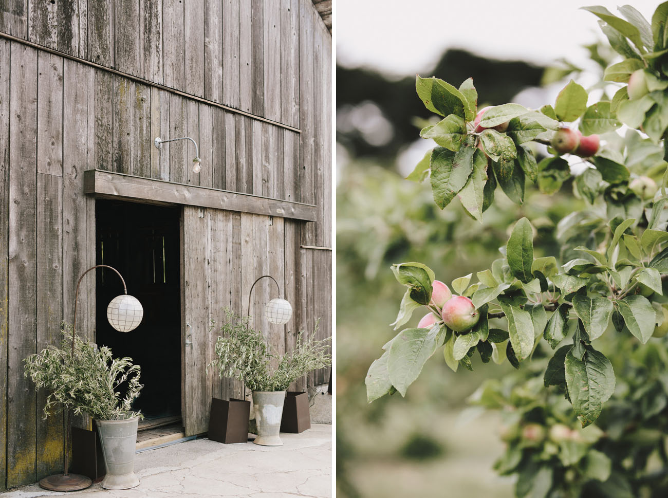 Kinfolk Inspired California Wedding