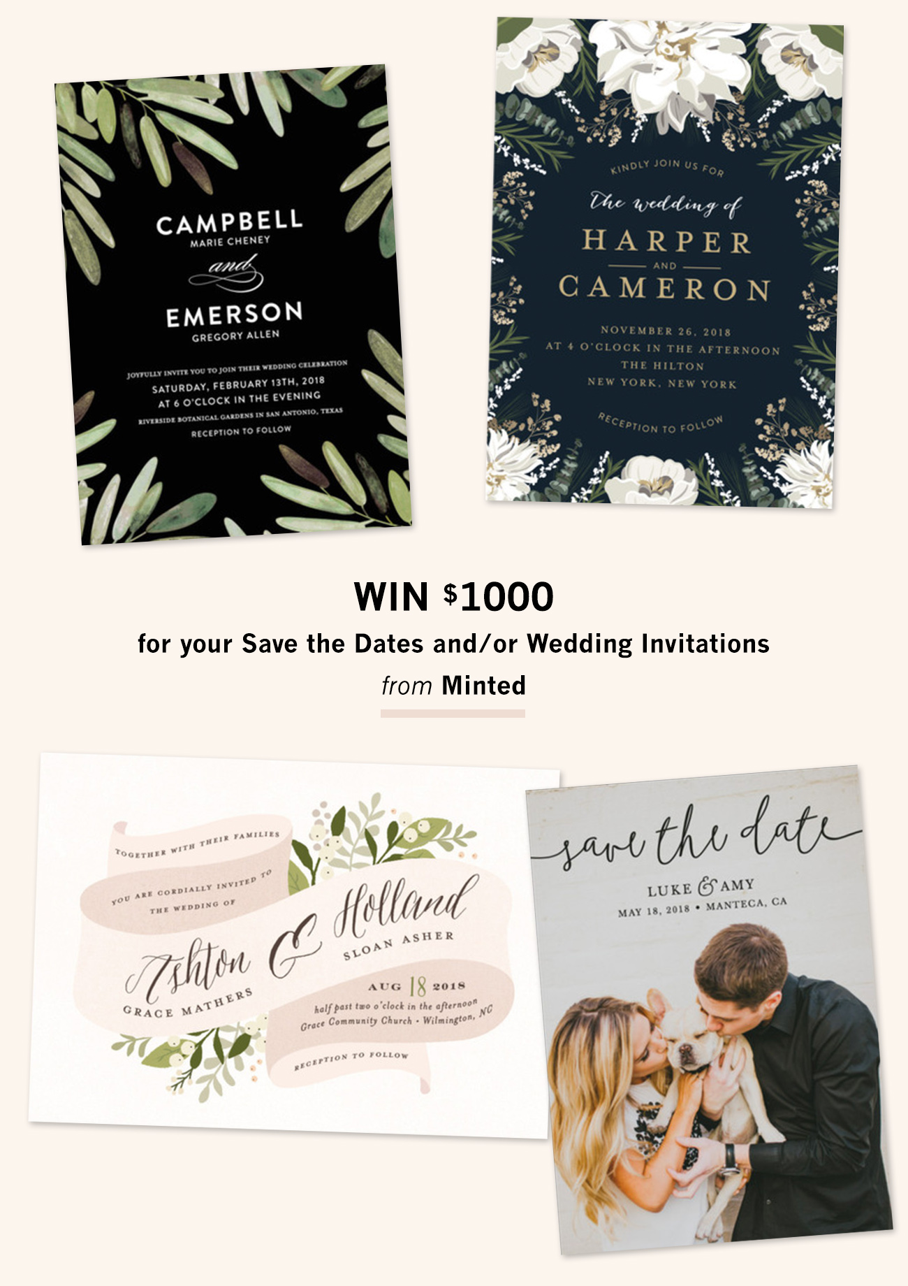 Invitation suites from minted 1000 giveaway green wedding shoes win 1000 from minted junglespirit Gallery