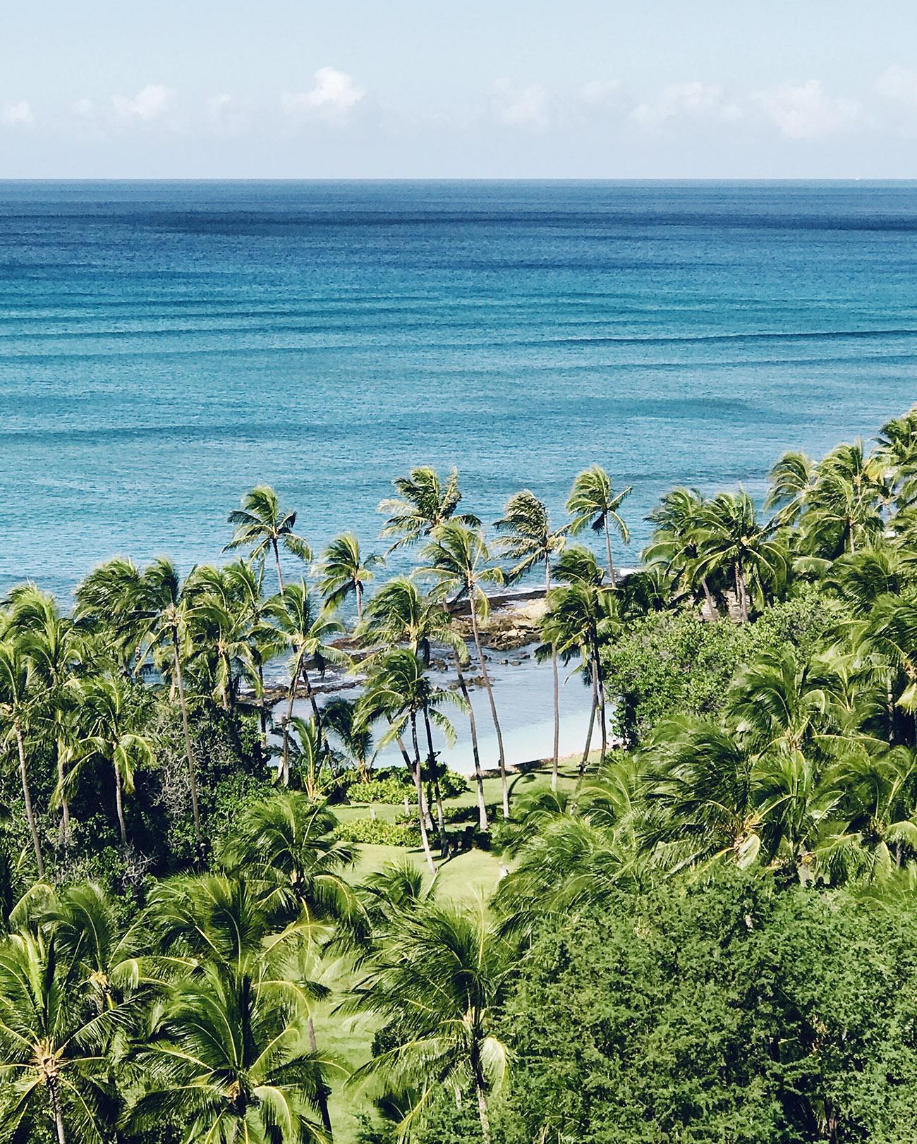 FS Oahu hotel view