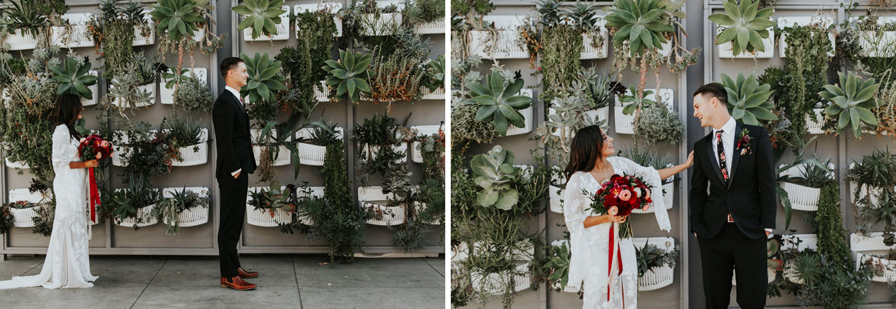 succulent wall first look