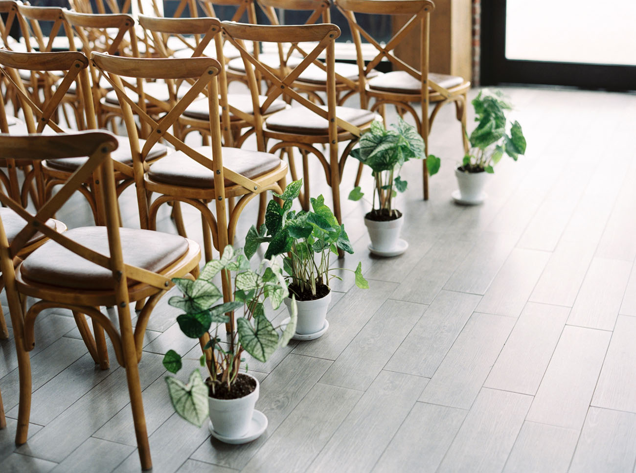 plant aisle runners
